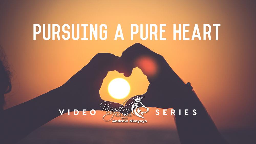 pursuing_pure_series.jpg
