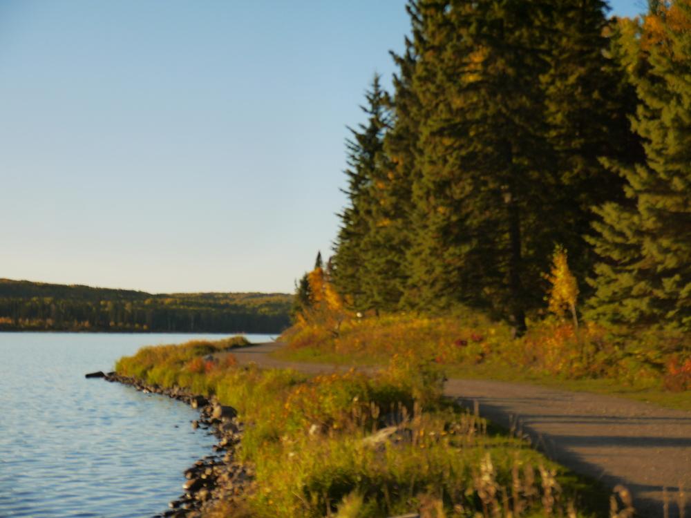 Parr Hill Lake shoreline