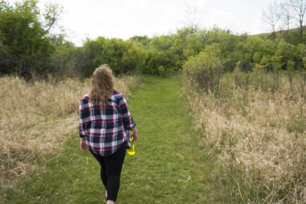 Nicolle Flats trail.jpg