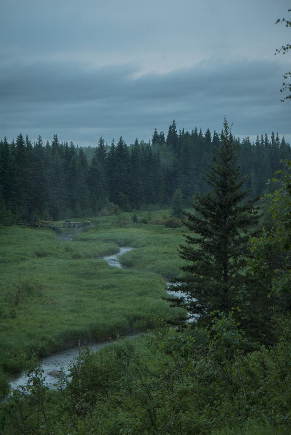 A cloudy evening overlooking Ness Creek.