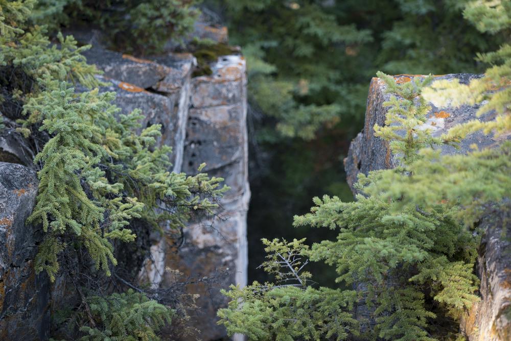 limestone_crevices_amisk.jpg