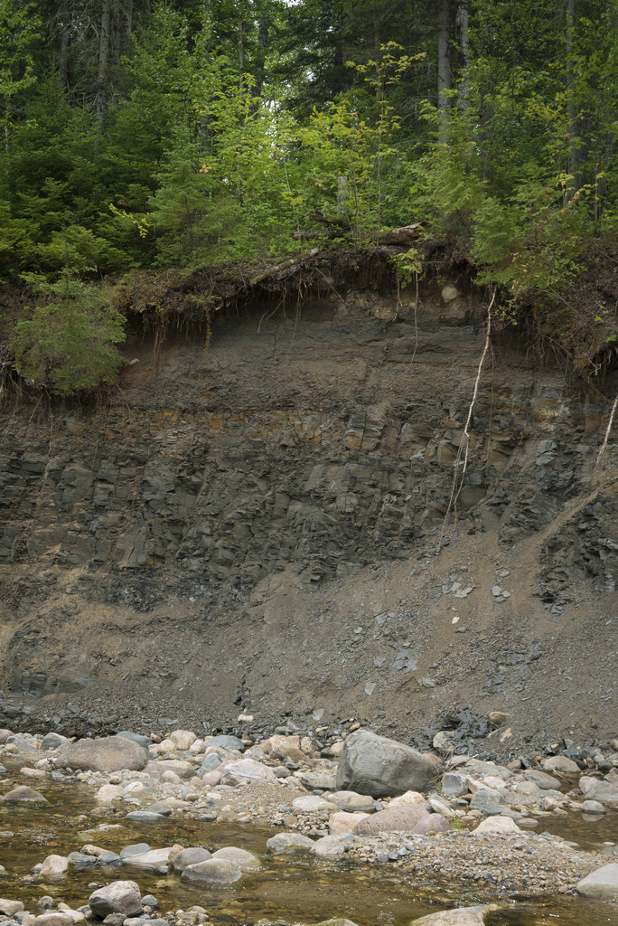 Giant shale outcrops - part of the reason oil companies suspected up to  $100 billion in oil shale deposits beneath the Pasquia Hills .