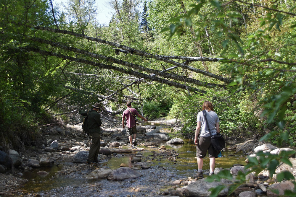 A more ambitious team heads upstream in search of brook trout and neat stuff.