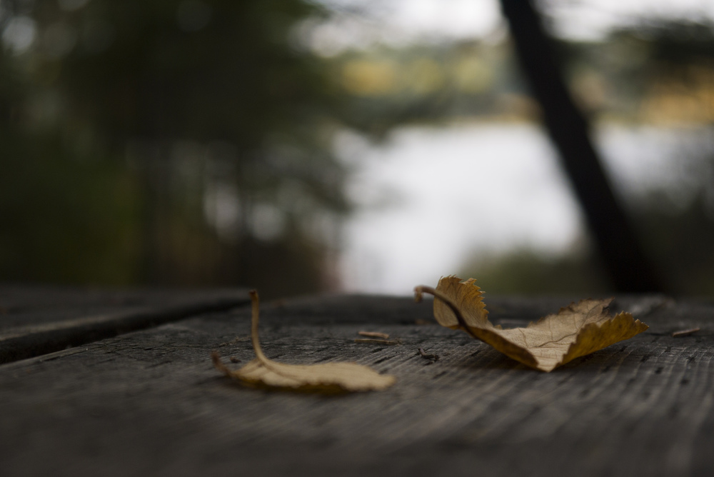 Fall brings mixed feelings in the prairie provinces.