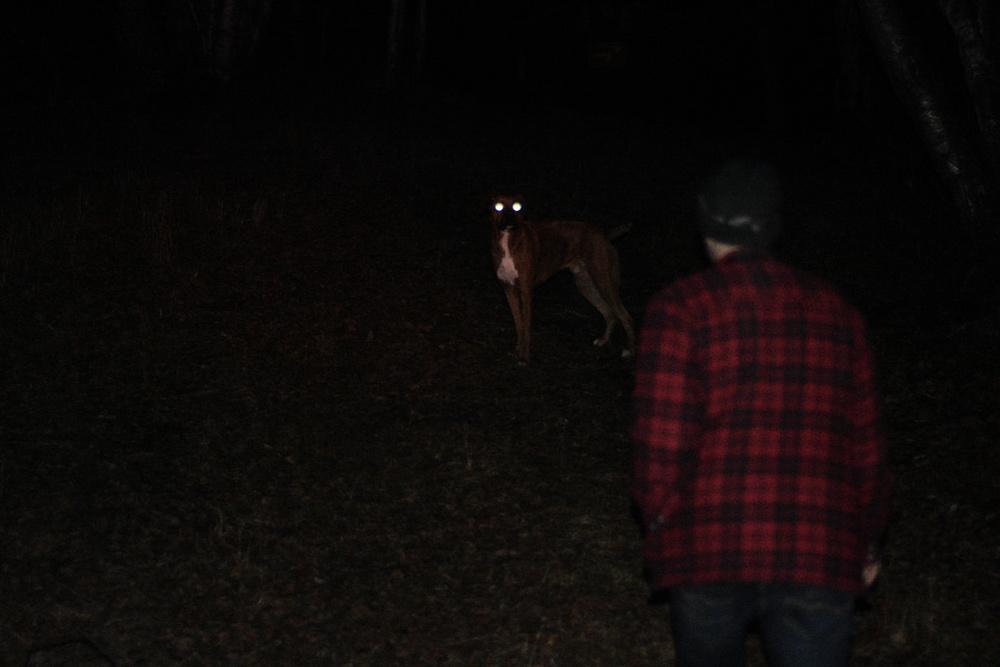 Nighttime hiking