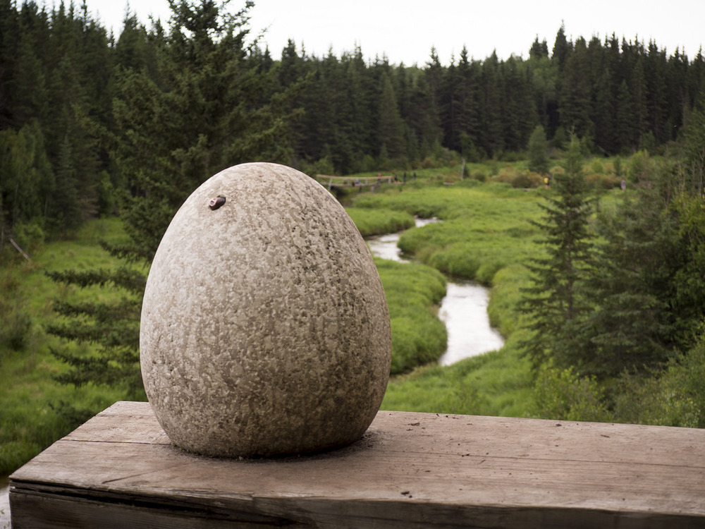 The famous Ness Creek egg.