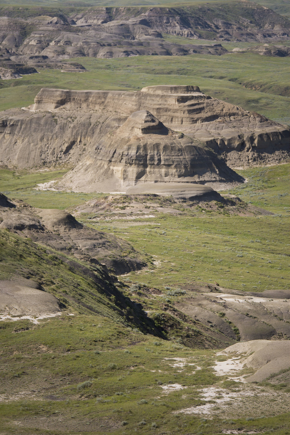 Although rainfall is infrequent here, torrential downpours and meltwater in the spring continuously erode the badlands' steep slopes, coullees and valleys.