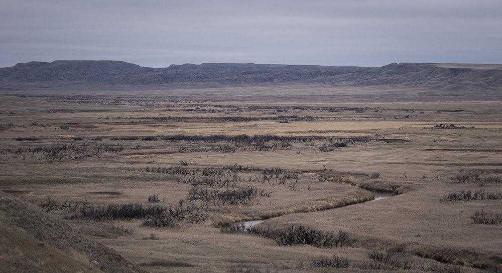 Northern savanna (Goodson)