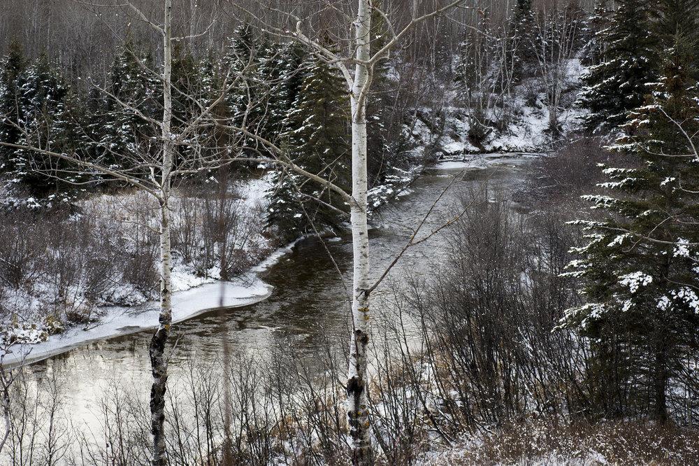 Woody River, Porcupine Hills, Saskatchewan