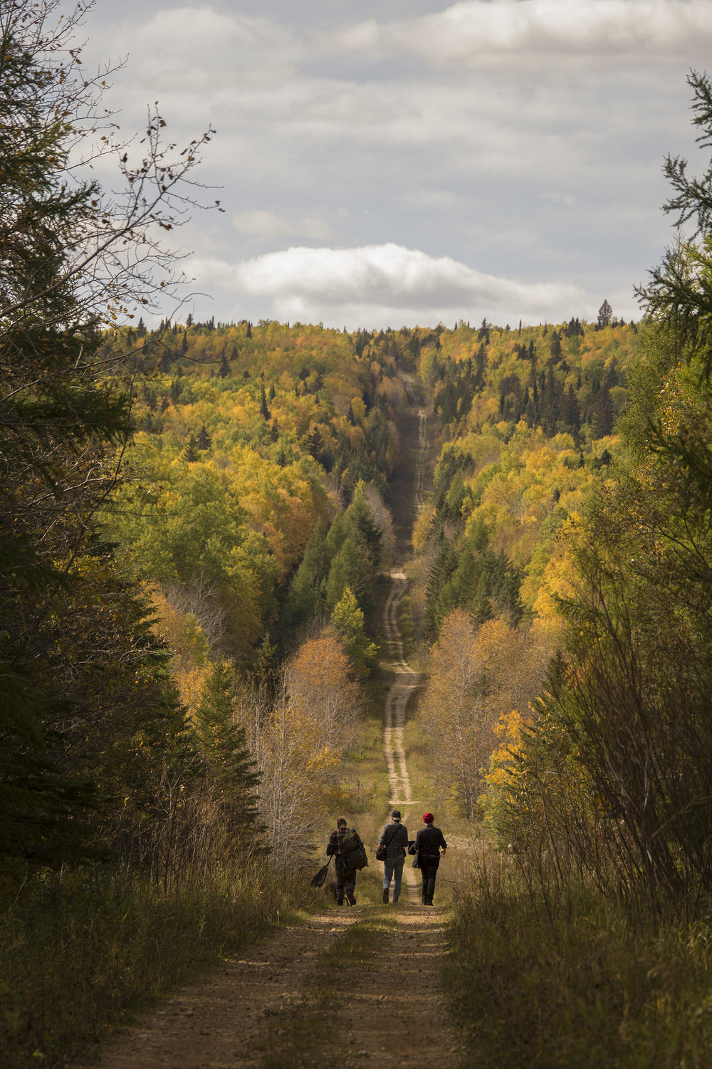 """Road to The Pine"" Duck Mountain, Manitoba"