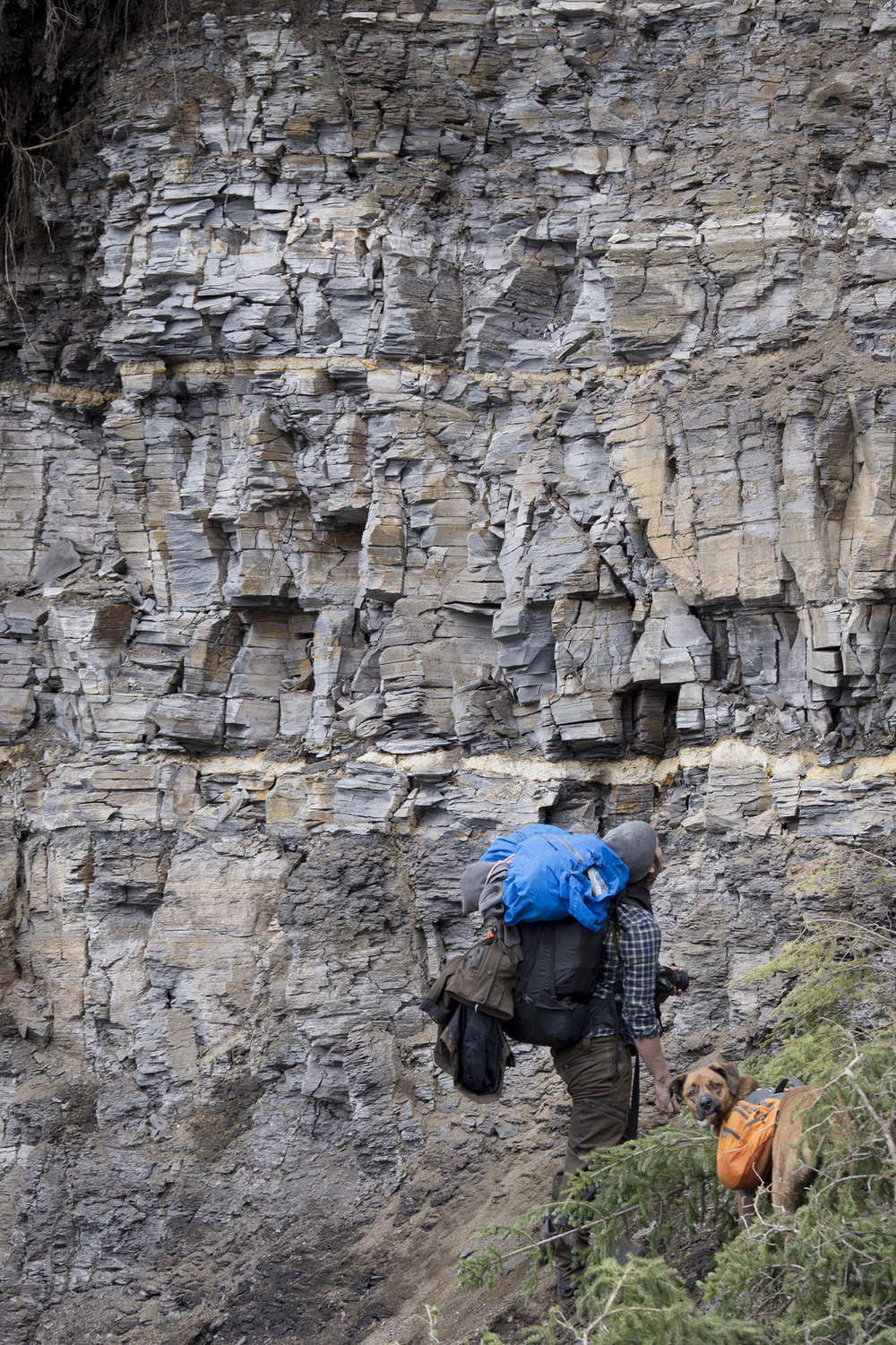 The Bainbridge River outcrop is the largest shale cliff we've seen to date. (Goodson)