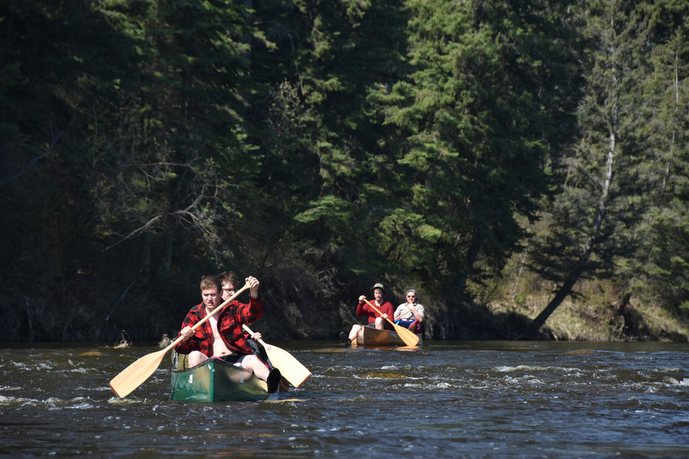 Anxious paddling (Hootz)