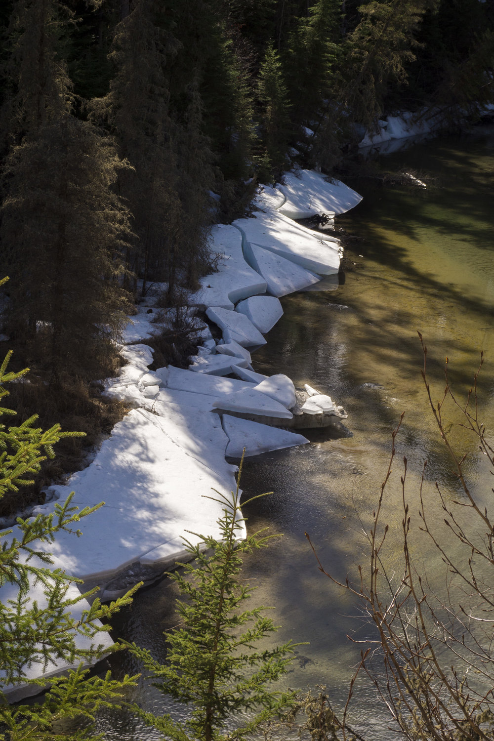Ice break-up on the Kingsmere River, Prince Albert National Park