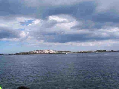 Farne Islands.jpg