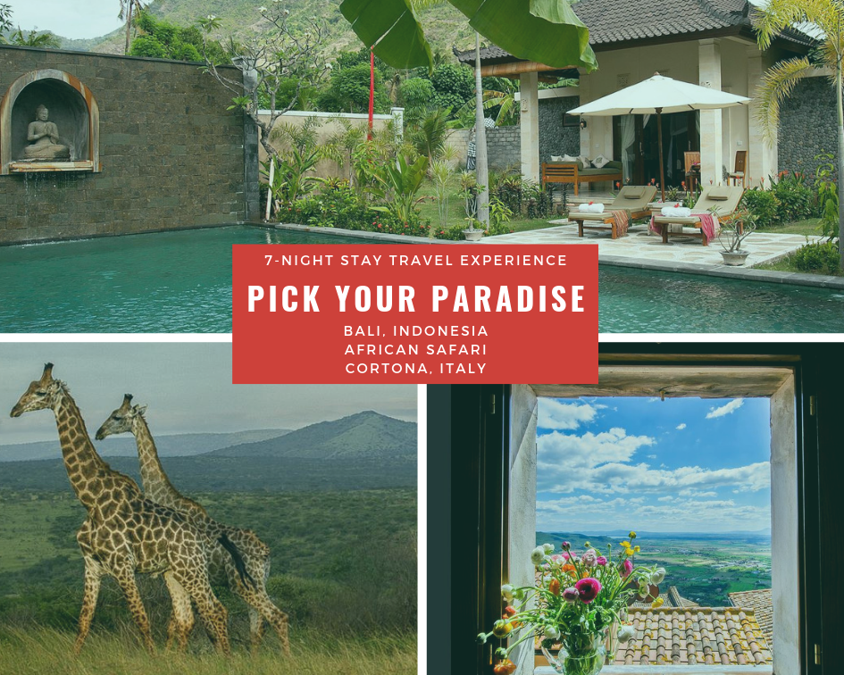 Pick your paradise.png