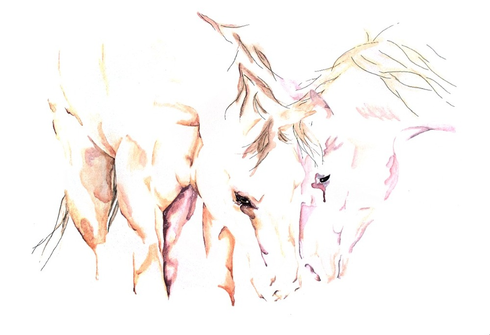 Affection horses love watercolor art painting abstract ranch rustic brad wilson artist artwork .jpg