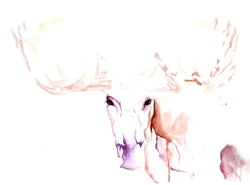 Moose artwork art brad wilson artist watercolor ink splatter abstract colorful painting bradley wilson studios spirt animal horns.jpeg