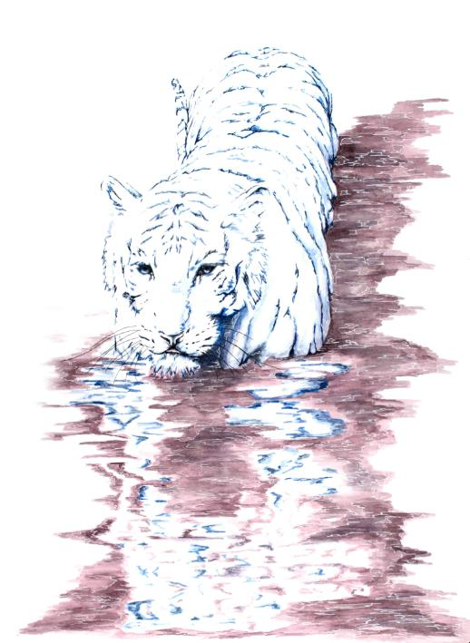 White Prince artwork art brad wilson artist watercolor ink splatter abstract colorful painting bradley wilson studios tiger water reflection .jpg
