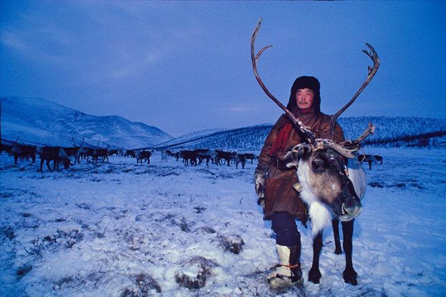 Merry. Christmas! Happy holidays! #reindeer #herder #arctic #arcticcircle #photography #travelphotography #russia#instagood #christmas #ice#cold #ngs