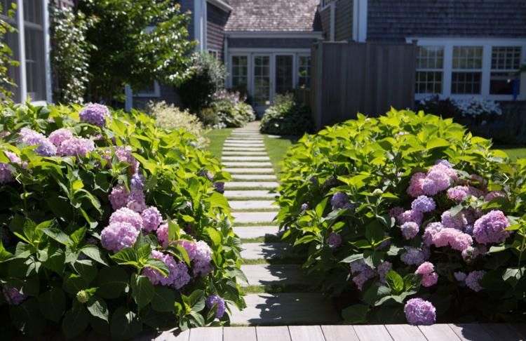 Jamie Kelly // Landscape Designer and Horticulturist