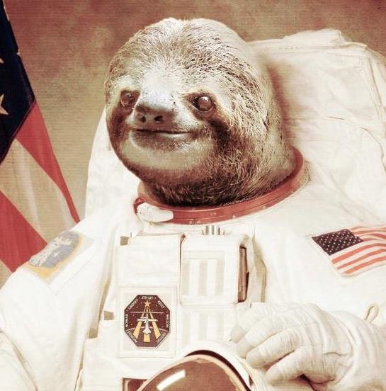 Sloth Astronaut.