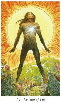 Wild Wood Tarot ~ Sun of Life Card