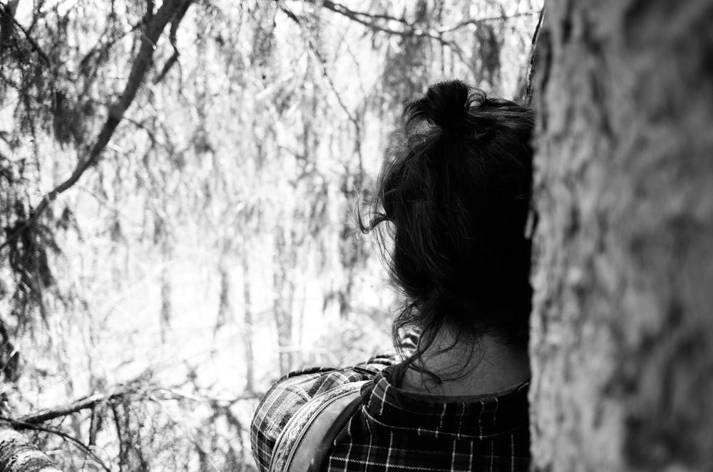 cheynetree3.jpg