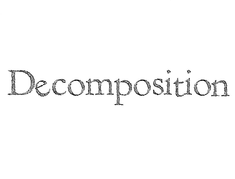 decomposition.jpg