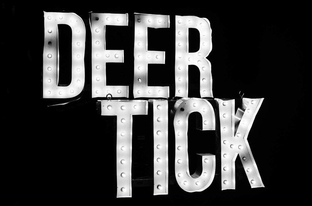 deertick-45.jpg