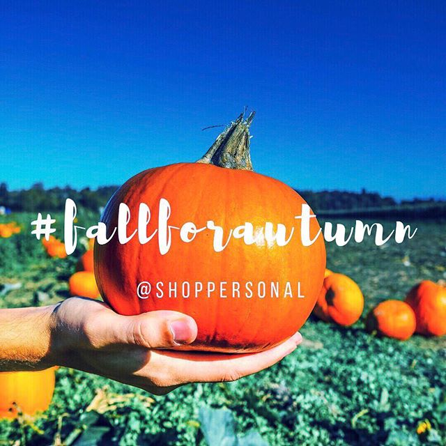 Hello pumpkin, ready to fall for autumn? 🎃 🎃 We are!! 🙋🏻‍♀️🙋🏻‍♀️ Make sure to support local farms by buying your pumpkin haul directly from the source! Decorating for the season has never been easier 😉👌🏼 ⠀ .⠀ .⠀ .⠀ #shoplocal #supportlocalfarmers #locavore #shopclt #shopsmall #farmtotable #farmtoporch #fallfestivities #shoppersonal #discoveritall #localeconomy #supportsmallbusiness #community #keepitclose #keepitlocal #pumpkin #hellopumpkin
