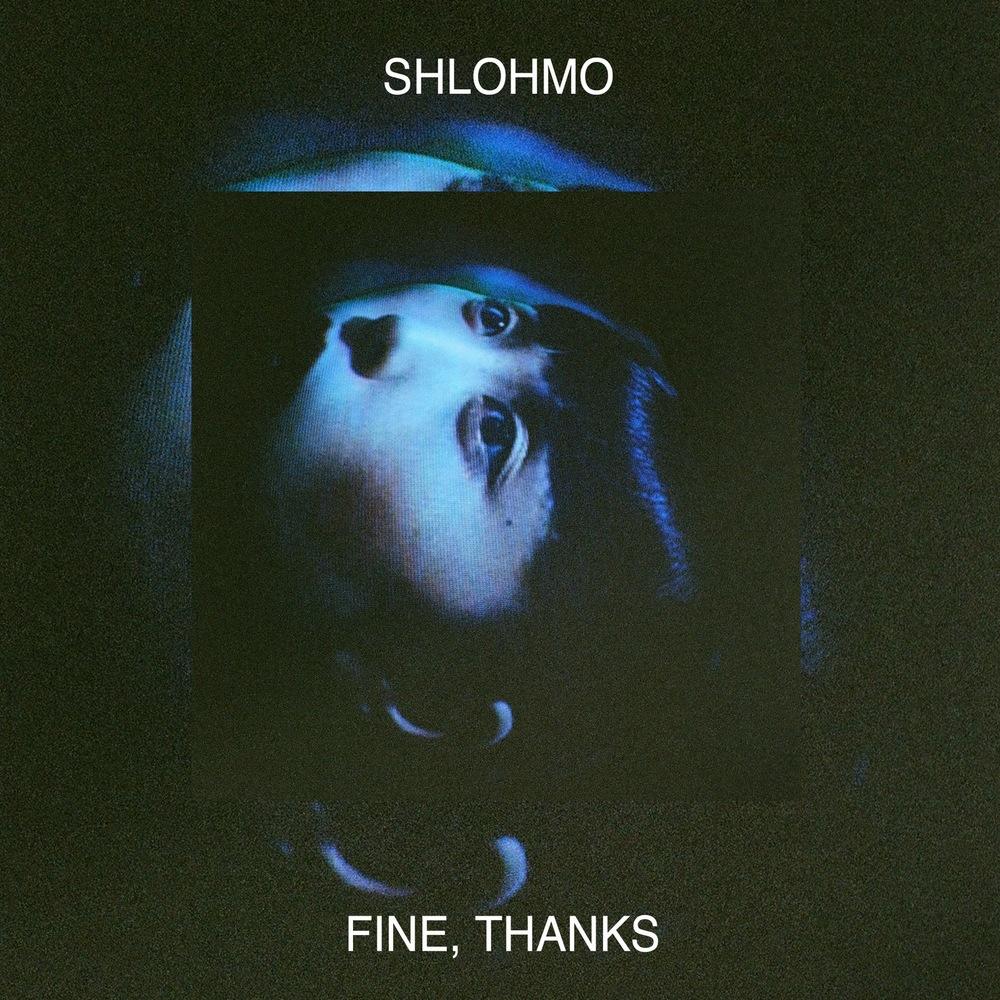 Image result for shlohmo fine thanks