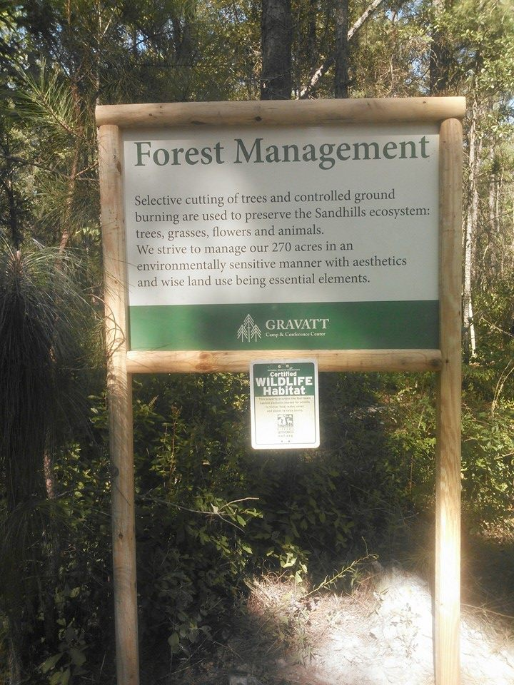 forest_sign