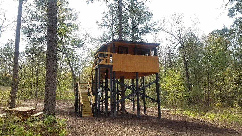 Tree House Classroom