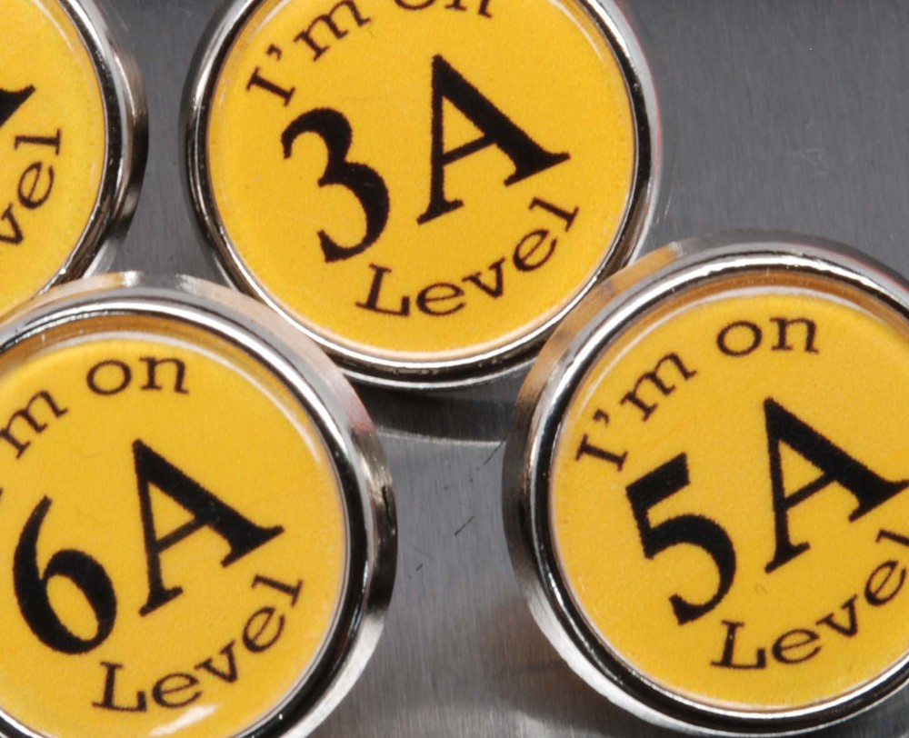 Reading Level Pins
