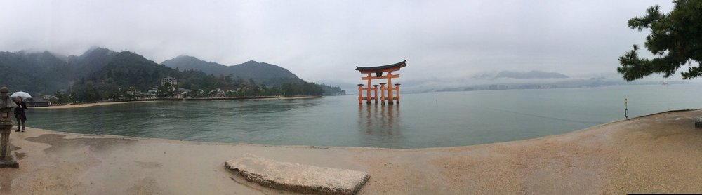 The Iconic Tori Miyajima