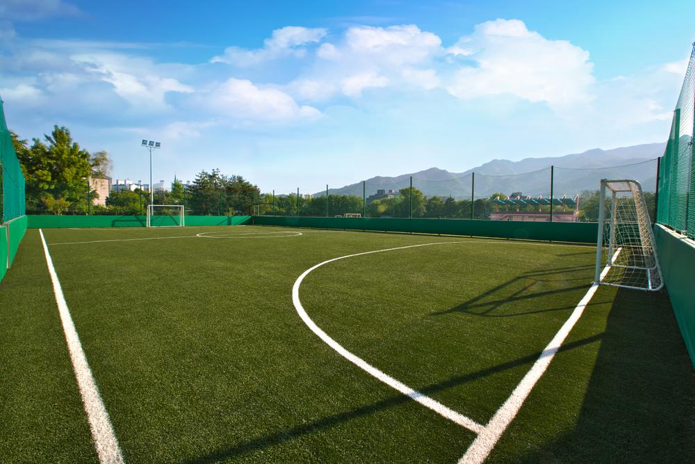히딩크 드림필드   히딩크 드림필드는 시각 장애우들을 위한 전용 풋살구장을 건립하는 프로젝트로, 재단의 대표적인 프로젝트 중 하나입니다.   자세히 알아보기
