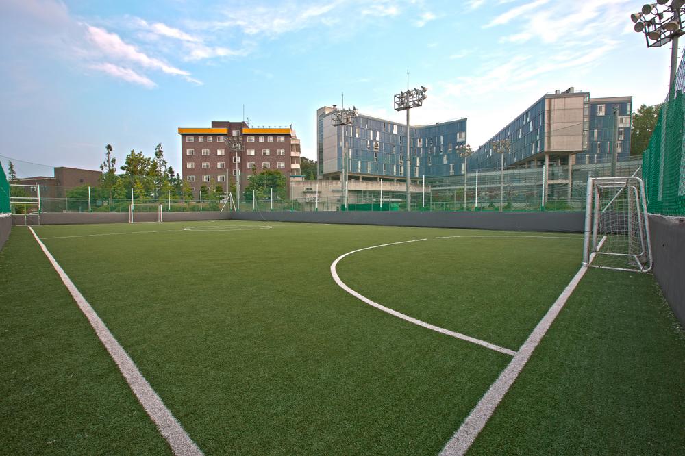 Dream field in Baejae University