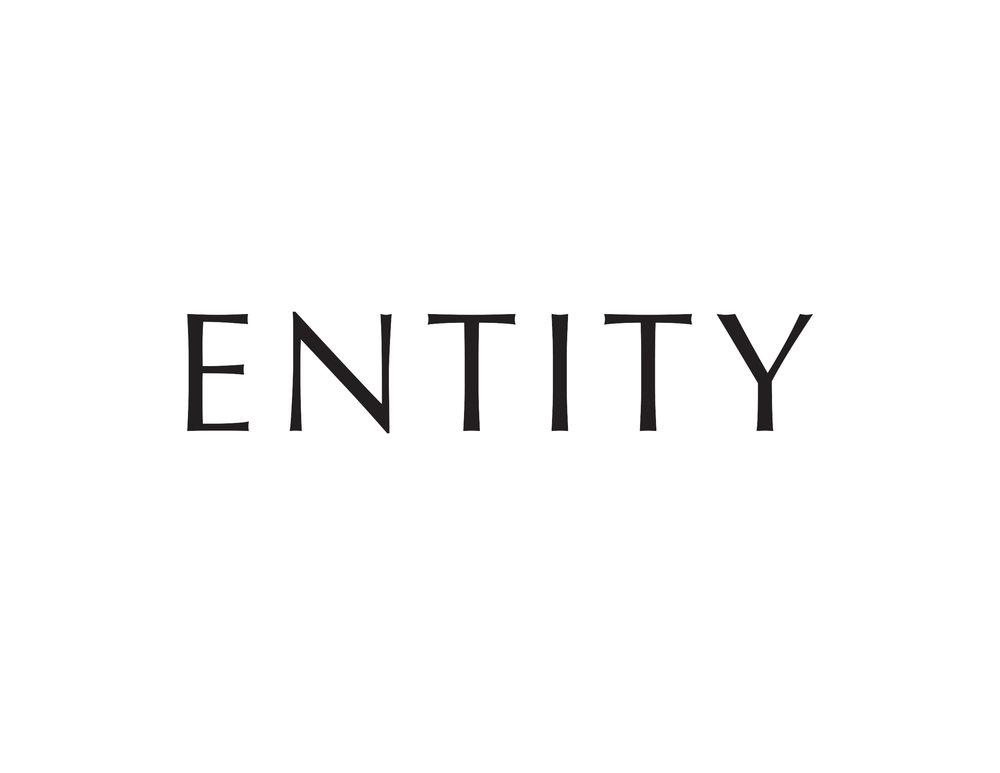 Entity.jpg