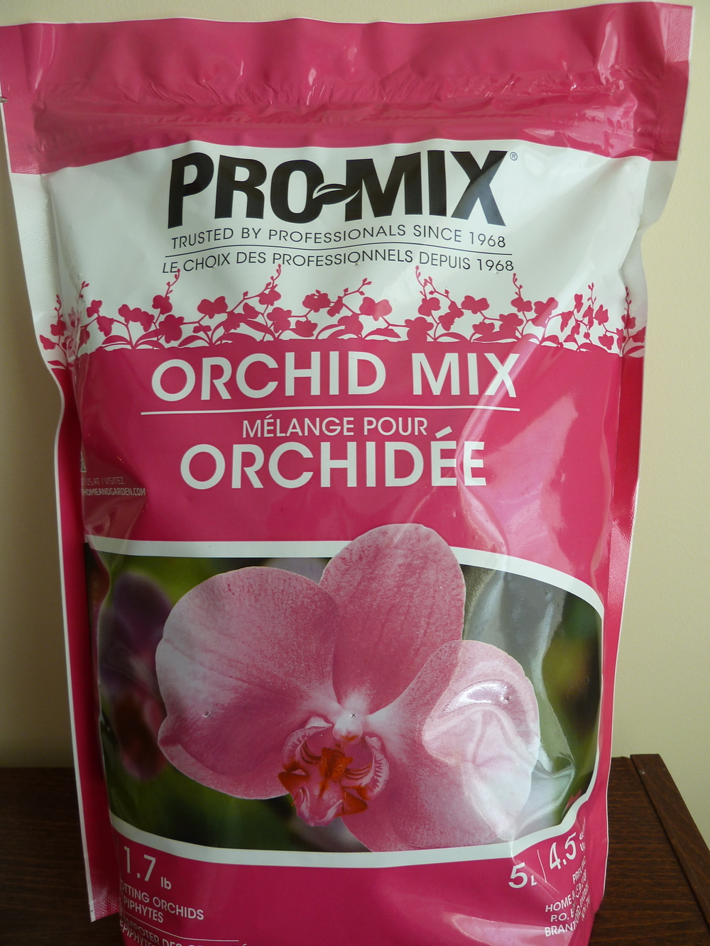 These simple tips will help you grow beautiful and healthy orchids for years to come!