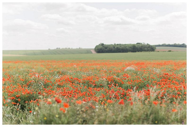Stonehenge_poppy_flower_field_Amesbury_Wiltshire_England_natalie_jayne_moore_natalie_jayne_photography_image