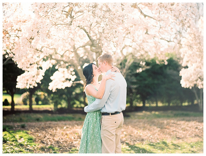 Film_Romanitc_styled_anniversary_picnic_Queenstown_Maryland_Natalie_Jayne_Photography_image