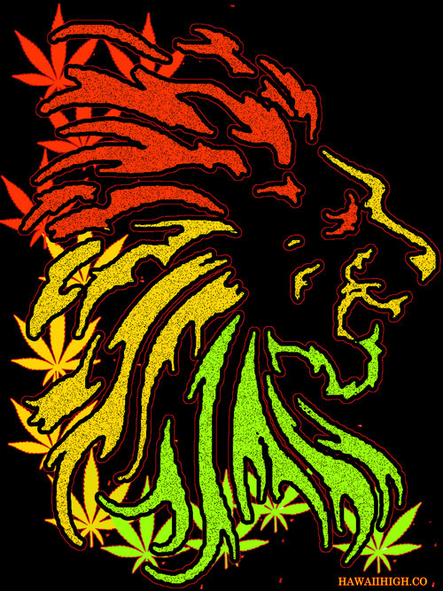 rasta lion hawaii high