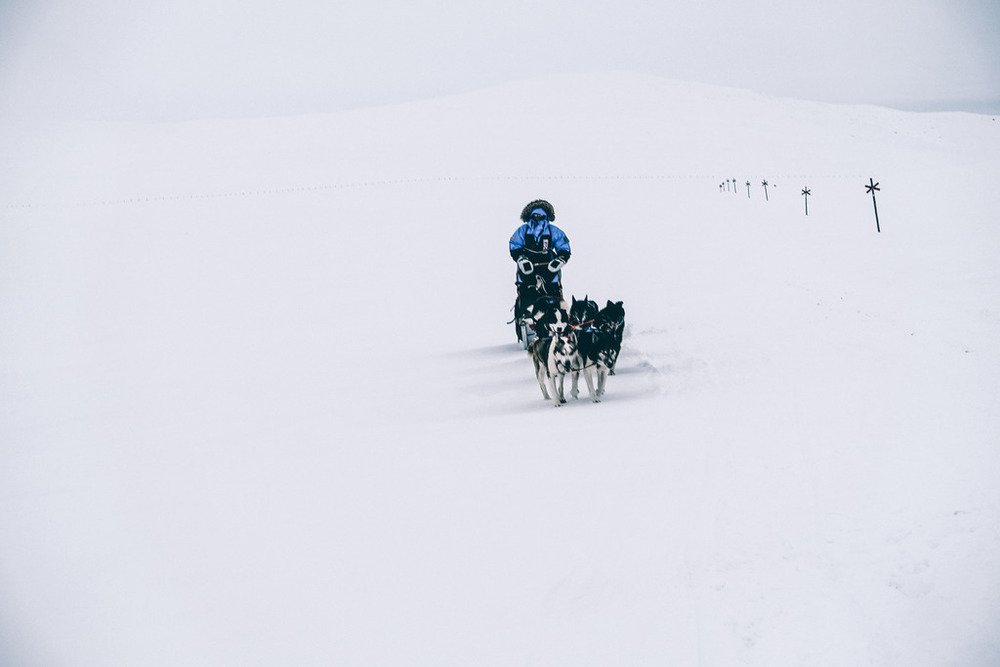 fjallraven polar expedition dog sled