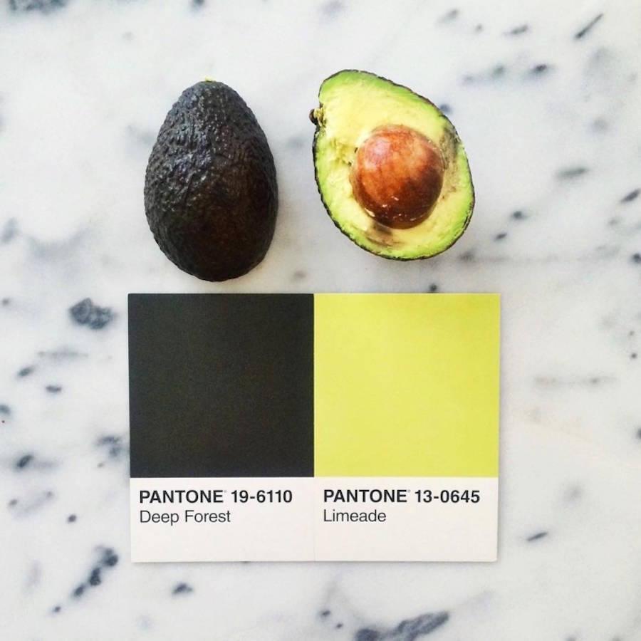 pantone-6-900x900.jpg