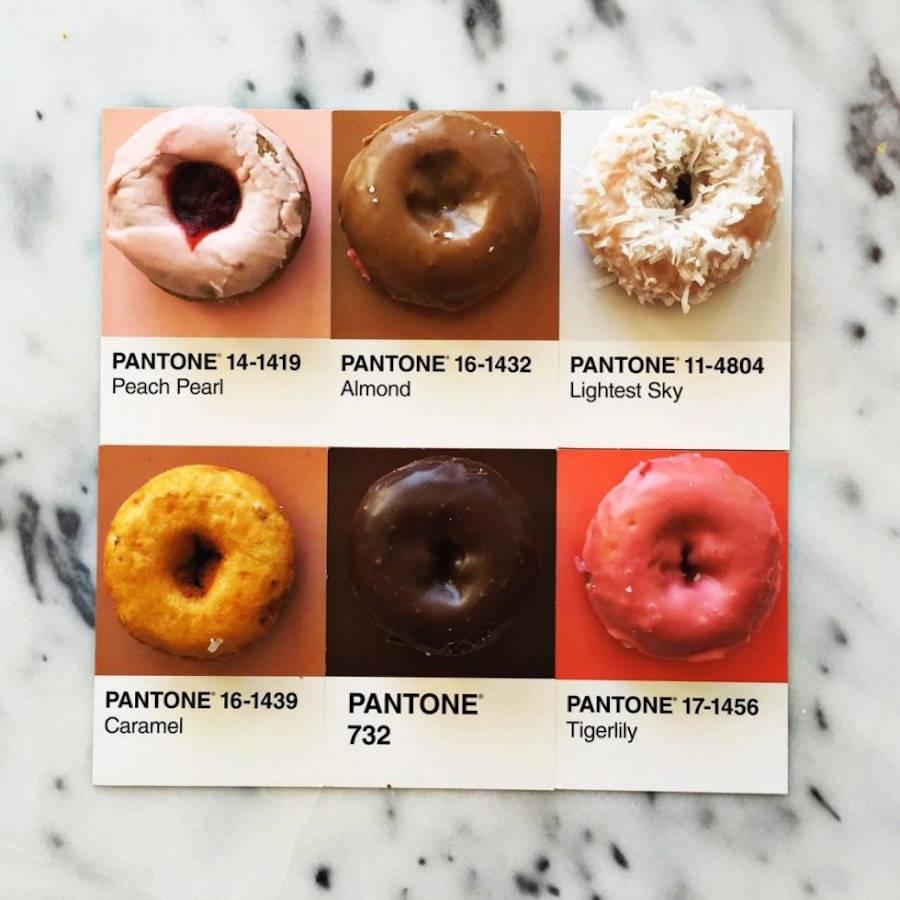 pantone-13-900x900.jpg