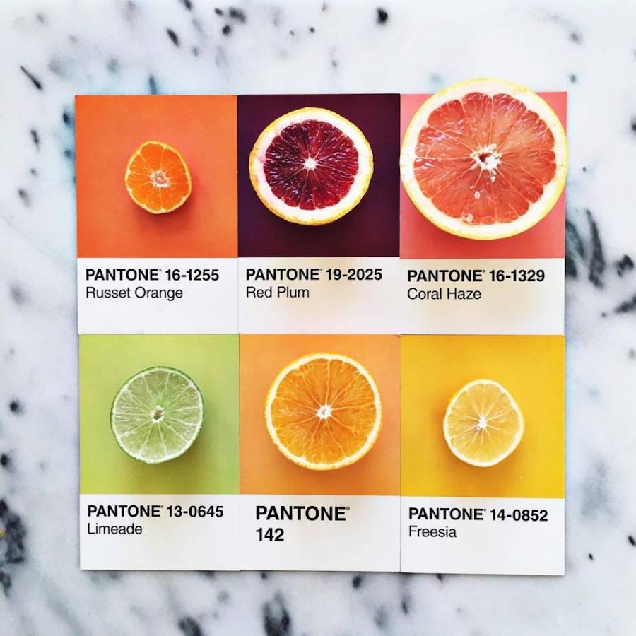 pantone-11-900x900.jpeg