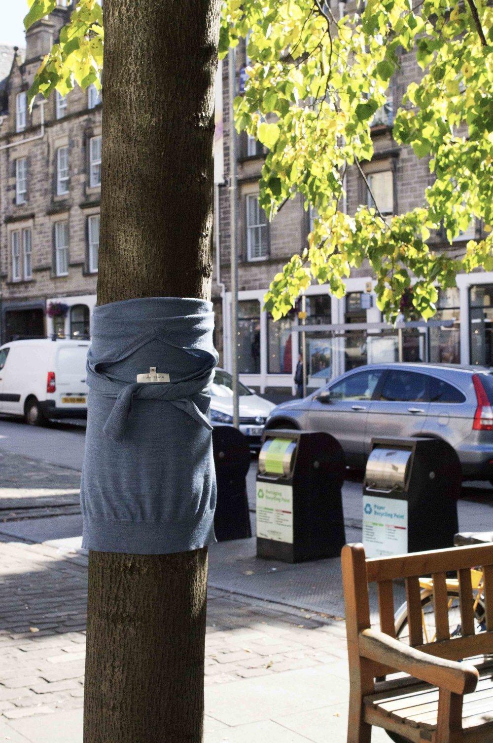 Lost Jumper, Edinburgh
