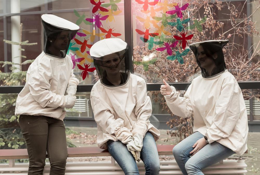 … sowie Ernte und Vertrieb des Honigs durch die AG, …   mehr erfahren