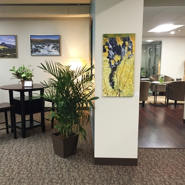 SERVICES FOR CORPORATE CLIENTS  >> We install pop-up exhibitions & find permanent decor for office art collections.