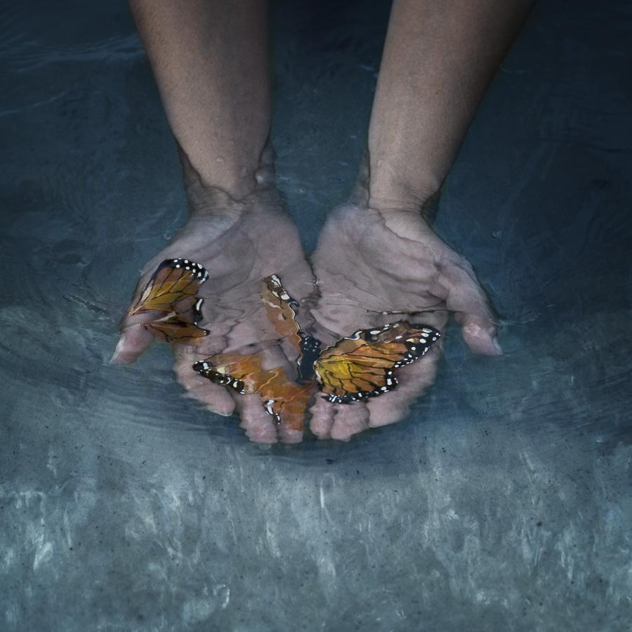 LatelaArtGallery-MarisaSWhite_Catch&Release